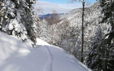 Drômen in de Winter